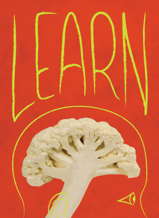 Wall graphic. Cauliflower forms the brain of a person, with the work 'learn' overhead.